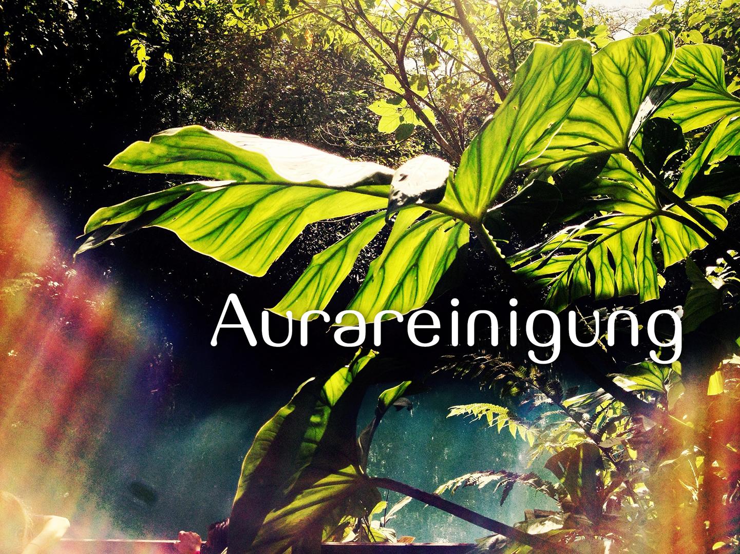 Aurareinigung_0024_