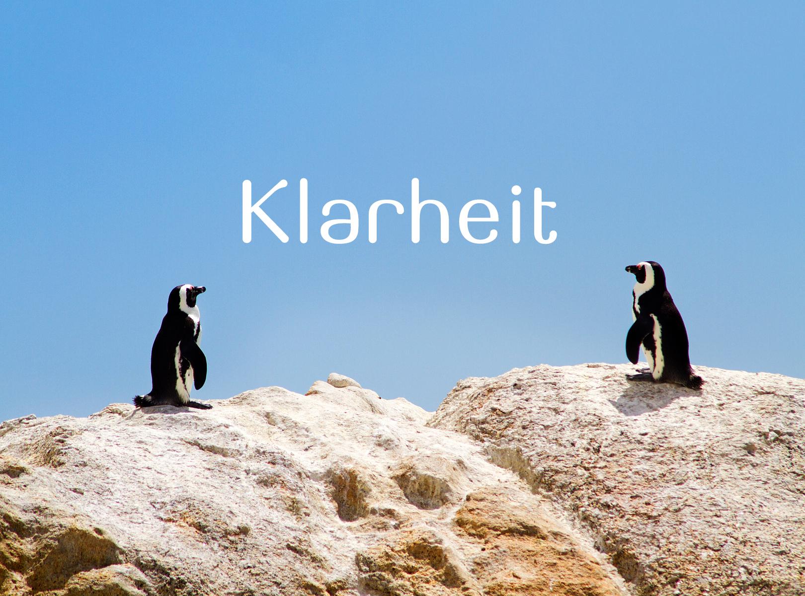 Klarheit_Pinguine_8038